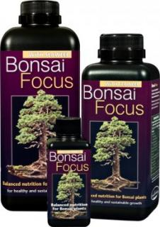 Bonsai Focus 500ml